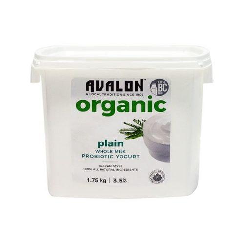 Avalon Organic Plain Yogurt (Family St), 1750g – 6/cs