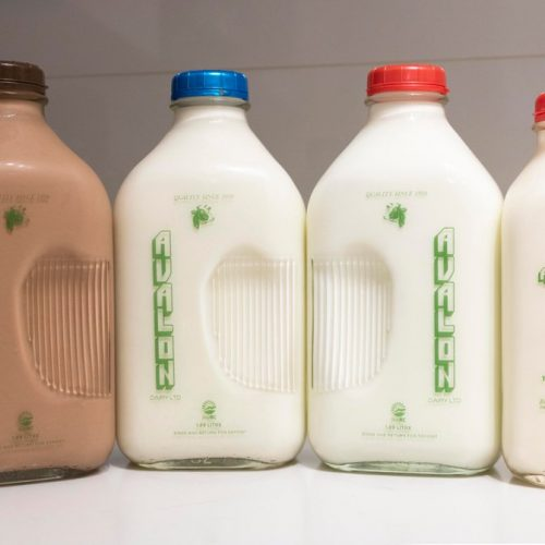 Avalon Chocolate Milk, 1.89L – 6/cs